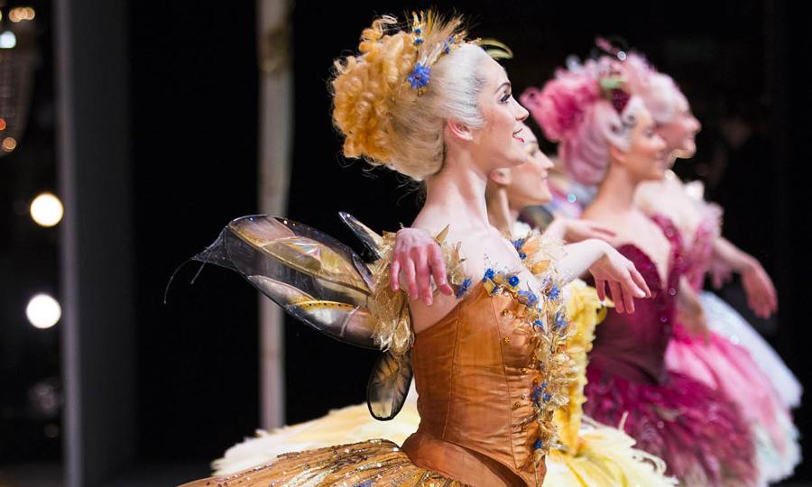 Gold Coast Arts and Culture Events