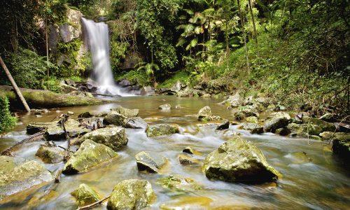 Lamington National Park Gold Coast